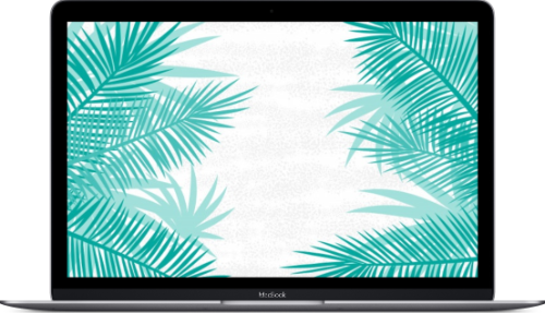 Macbook with palms on the screen